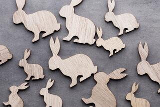 rabbit cutouts