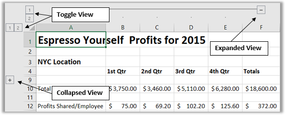 Excel adds show and hide buttons to help toggle your view